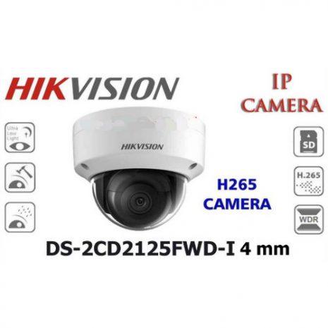 HikVision DS-2CD2125FWD-I 01